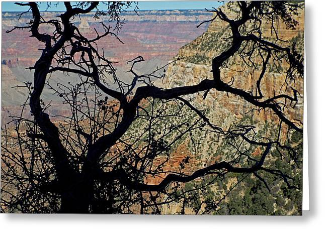 Grand Canyon 8 Greeting Card
