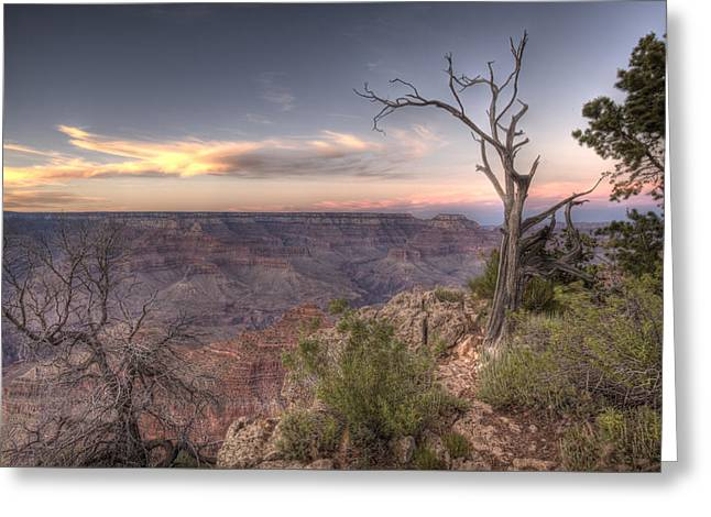Grand Canyon 991 Greeting Card by Michael Fryd