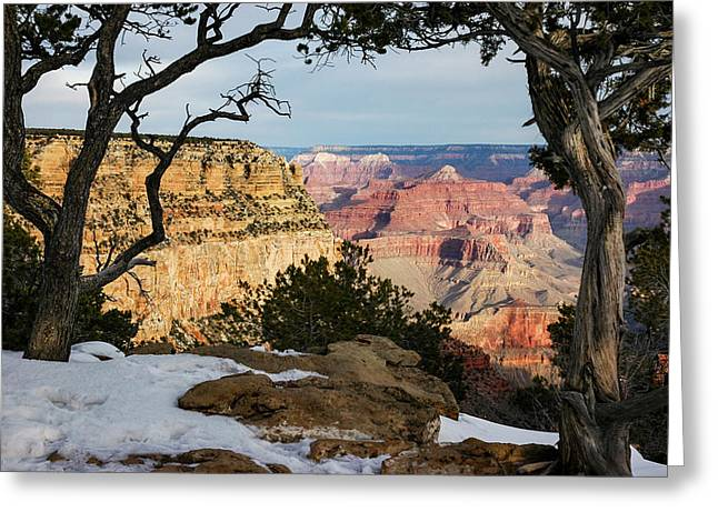 Grand Canyon At Sunrise Greeting Card by Mary Lee Dereske