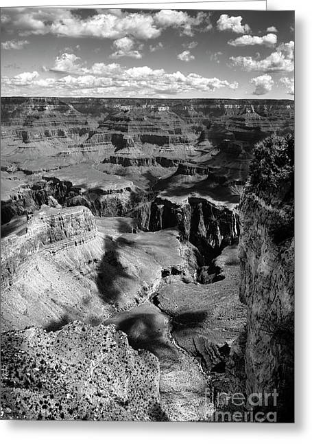 Grand Canyon Bw Greeting Card by RicardMN Photography