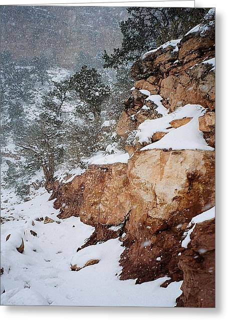 Grand Canyon In Snow Greeting Card by Ruth Sharton