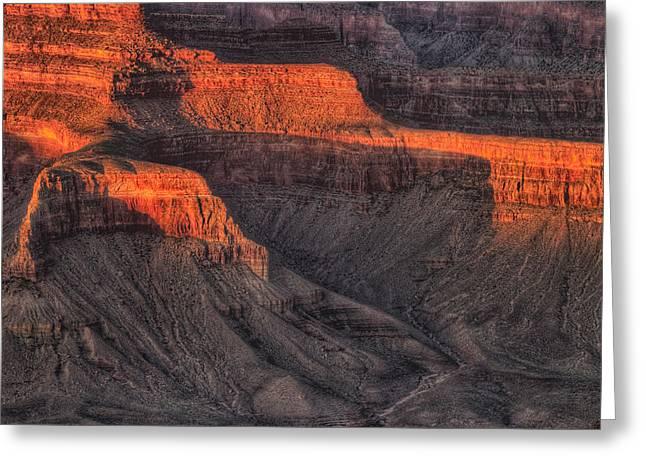Grand Canyon Light Greeting Card by Steve Gadomski