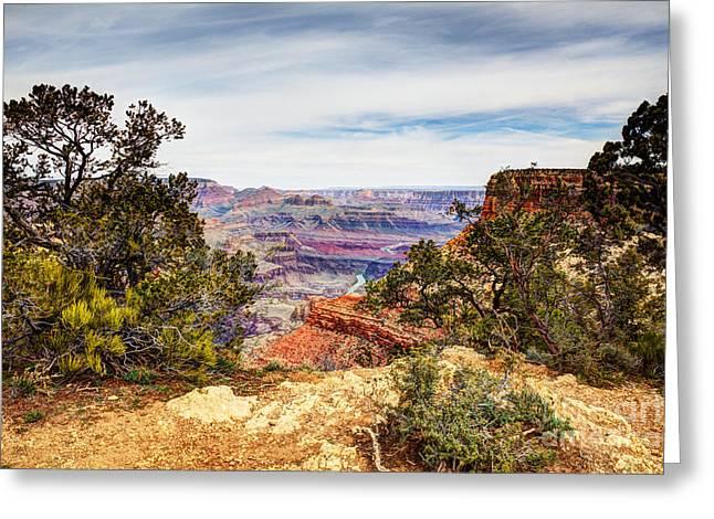 Grand Canyon Moran Point.  Greeting Card by Wayne Moran