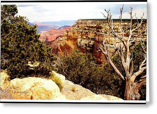 Grand Canyon National Park, Arizona Greeting Card