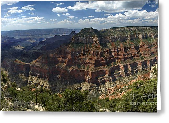 Grand Canyon North Rim Greeting Card