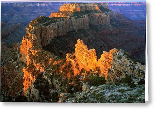 Grand Canyon North Rim Greeting Card by Johan Elzenga