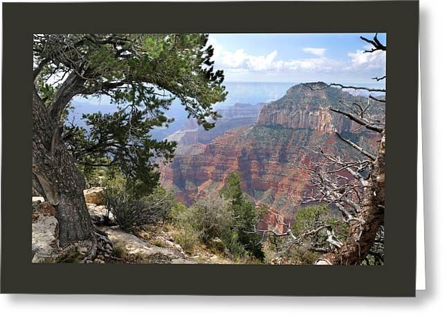 Grand Canyon North Rim - Through The Trees Greeting Card