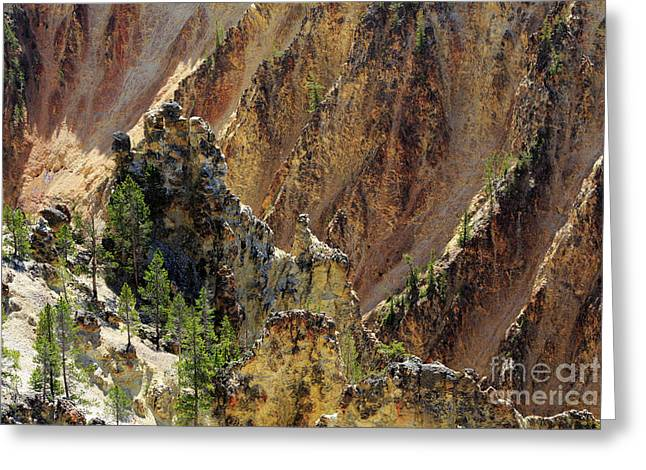 Grand Canyon Of The Yellowstone From North Rim Drive Greeting Card by Louise Heusinkveld