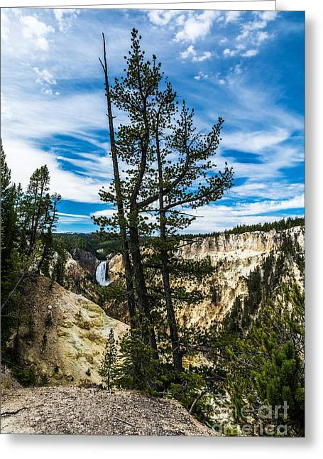 Grand Canyon Of The Yellowstone Greeting Card by Mel Steinhauer