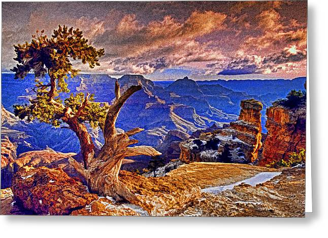 Grand Canyon Pine Greeting Card by Dennis Cox WorldViews
