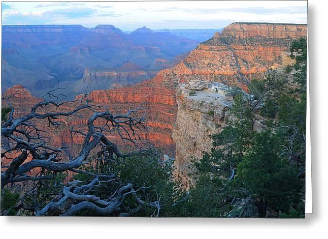 Grand Canyon South Rim - Red Hues At Sunset Greeting Card