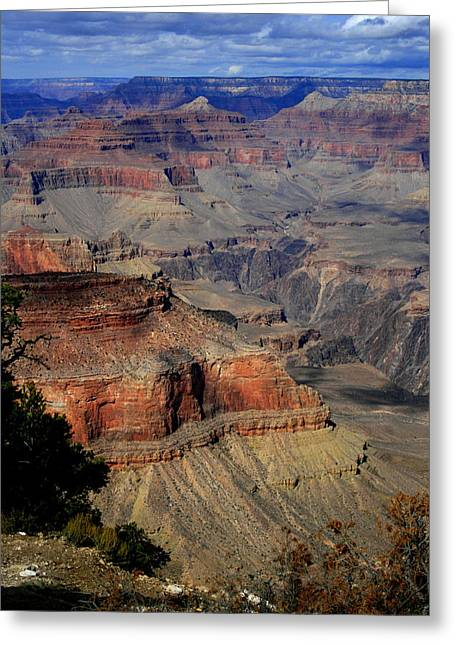 Grand Canyon Vastness Greeting Card