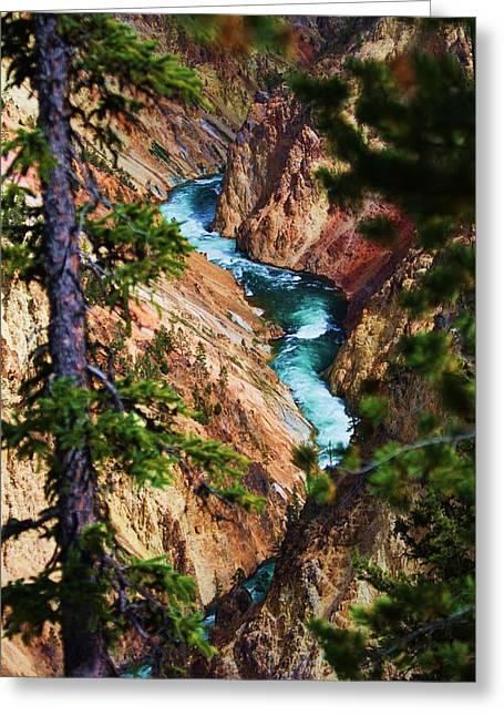 Grand Canyon  Yellowstone Greeting Card by Russell  Barton