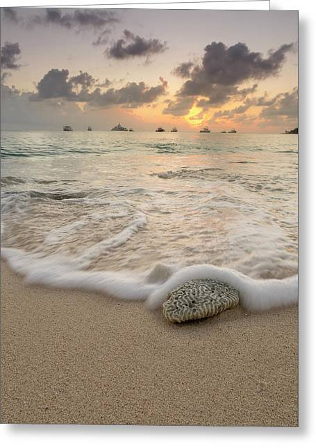 Greeting Card featuring the photograph Grand Cayman Beach Coral Waves At Sunset by Adam Romanowicz
