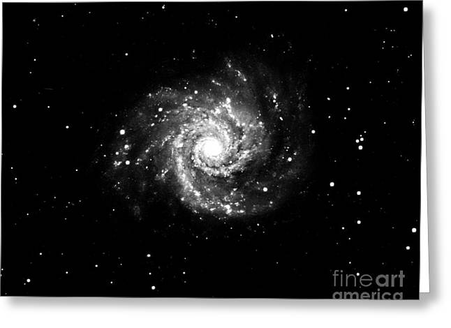 Grand Design Spiral Galaxy, M74, Ngc 628 Greeting Card