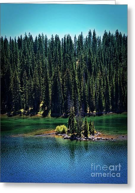 Grand Mesa Emerald Isle Greeting Card by Janice Rae Pariza