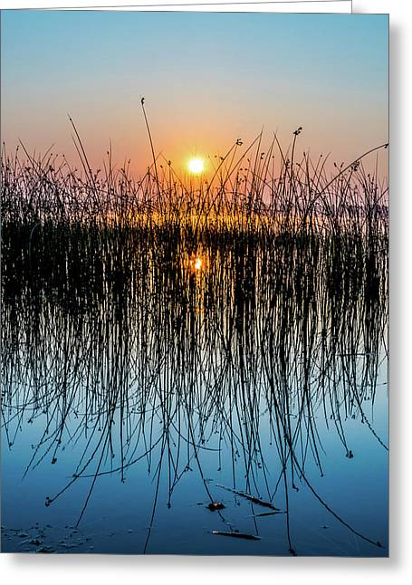 Grand New Day Greeting Card
