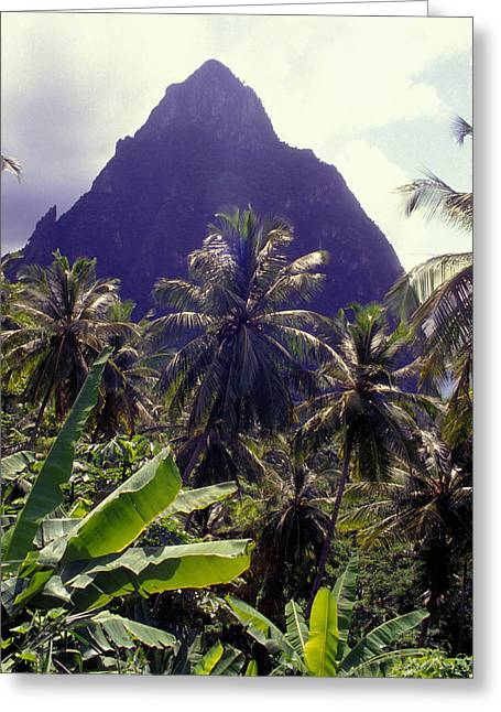 Grand Piton Greeting Card by Carl Purcell