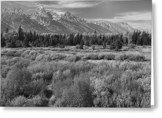 Grand Teton Afternoon Greeting Card