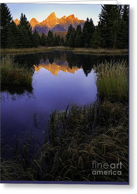 Grand Teton Morning Greeting Card by Craig J Satterlee