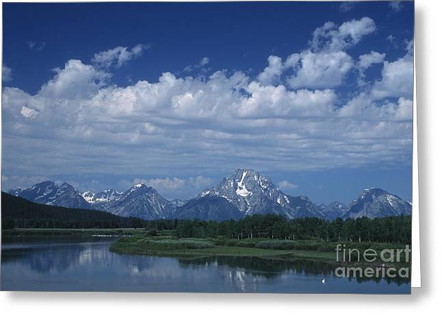 Grand Tetons In Spring Greeting Card by Stan and Anne Foster