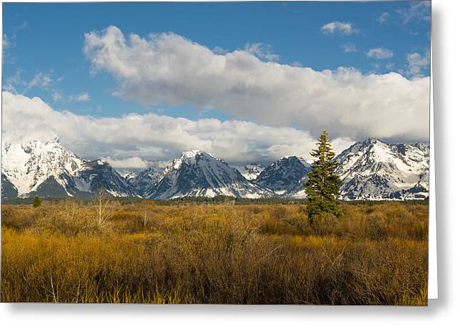 Greeting Card featuring the photograph Grand Tetons by Mike Evangelist