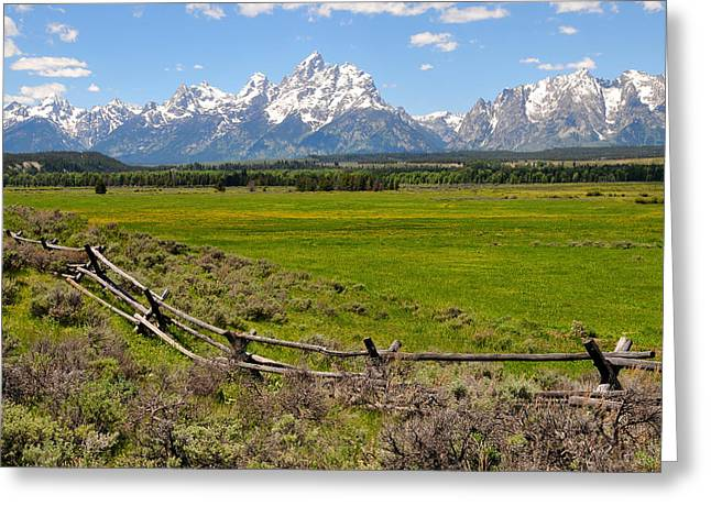 Grand Tetons With Buck And Pole Fence Greeting Card