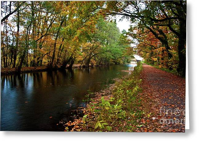 Grand Western Canal At Westcott Greeting Card