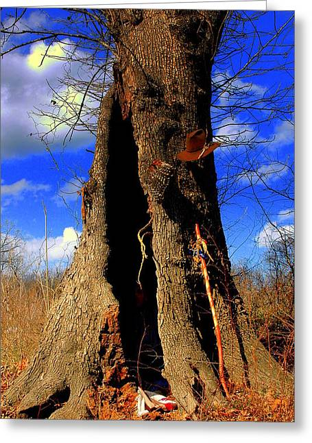 Grandfather Tree Greeting Card by Kicking Bear  Productions