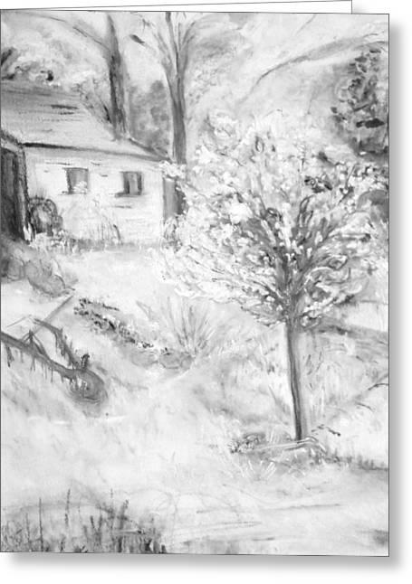 Grandpa's Backyard Iv Greeting Card by Helena Bebirian