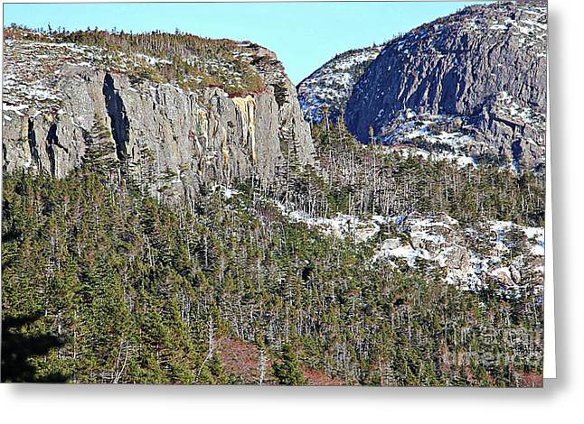 Granite Rock Cliffs Greeting Card by Barbara Griffin