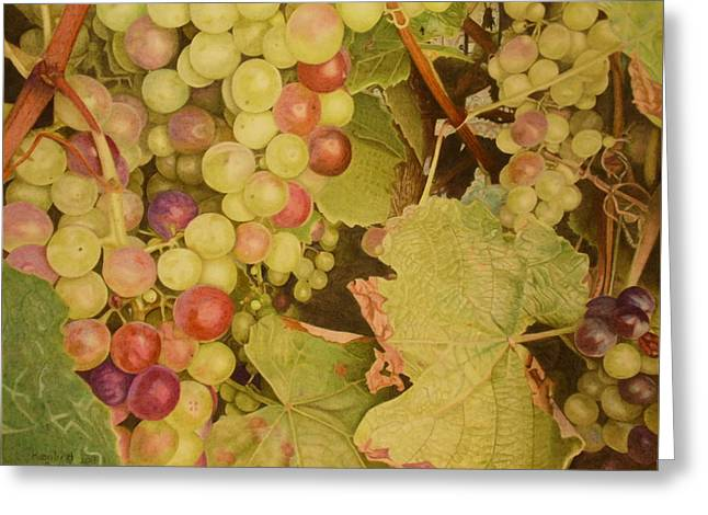 Grapes On A Vine Greeting Card
