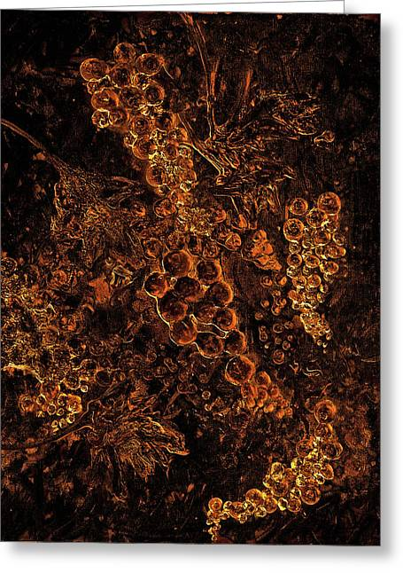 Grapes On The Vine Gold Art Greeting Card