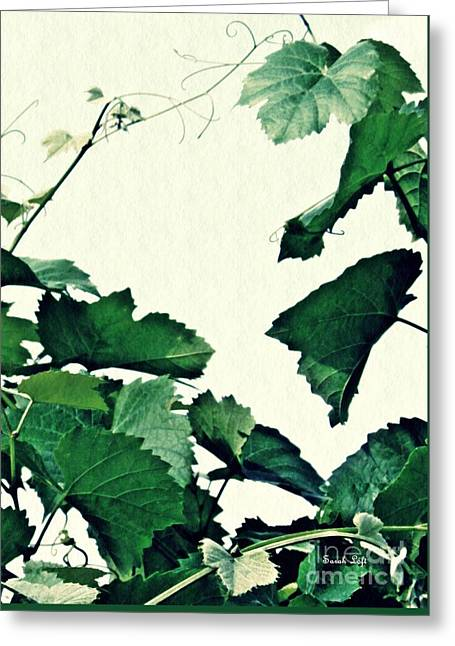 Grapevine Greeting Card by Sarah Loft