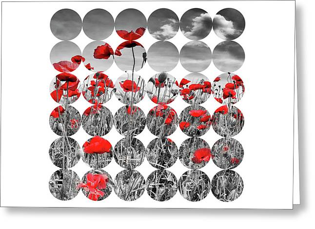 Graphic Art Poppies Greeting Card