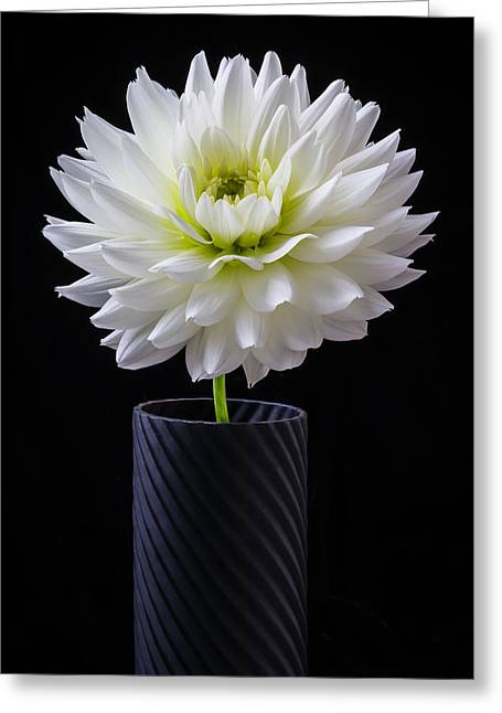 Graphic Dahlia Greeting Card by Garry Gay