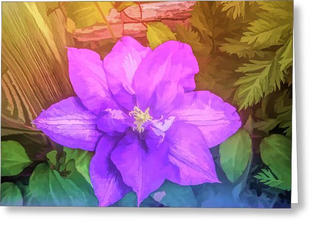 Graphic Rainbow Passion Vine Greeting Card