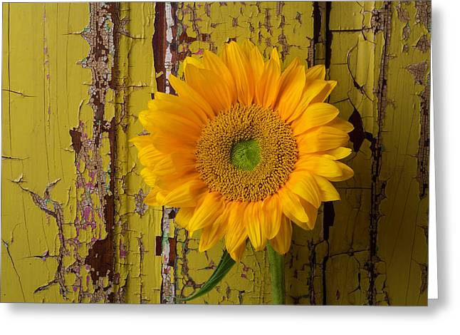 Graphic Sunflower Greeting Card by Garry Gay