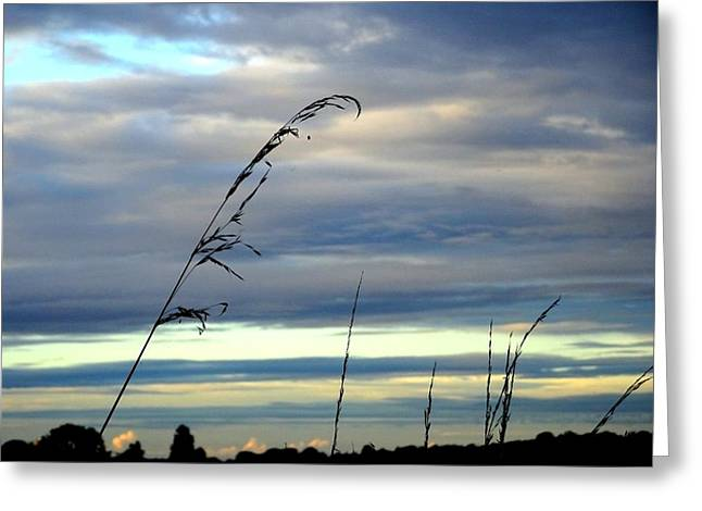 Grass Against Abstract Sky Greeting Card