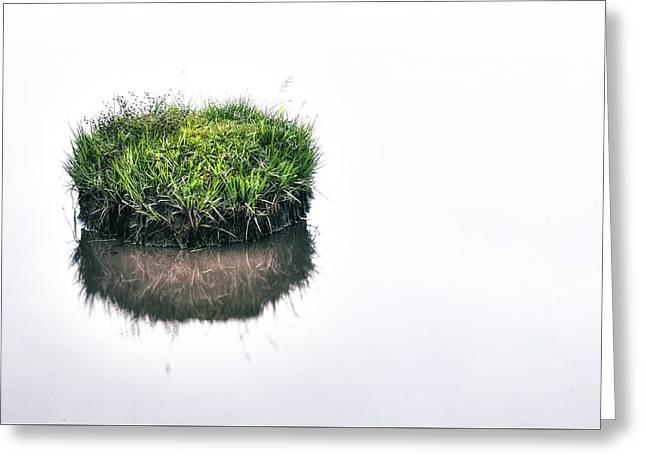 Grass Island Greeting Card by Joana Kruse