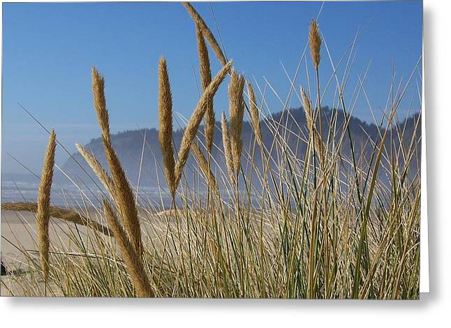 Greeting Card featuring the photograph Grass Seeds On The Beach by Angi Parks