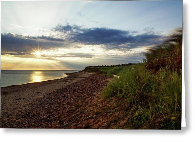 Greeting Card featuring the photograph Grass Sways On Prince Edward Island Bluffs by Chris Bordeleau