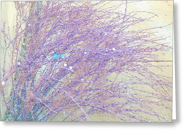 Greeting Card featuring the photograph Grasses Toward The Sun by Lenore Senior