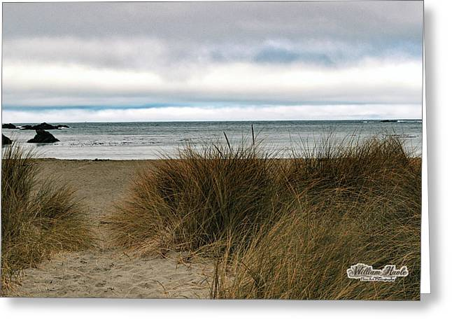 Grassy Beach Greeting Card by William Havle