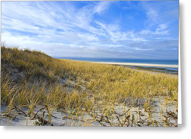 Grassy Sand Dunes Overlooking The Beach Greeting Card
