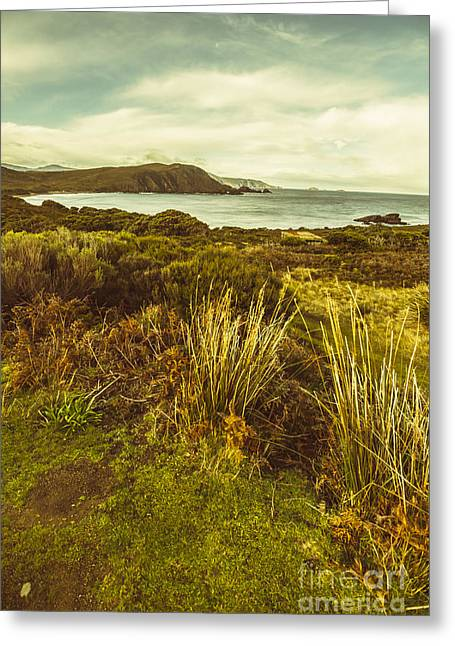 Grassy Hills And Distant Mountains Greeting Card