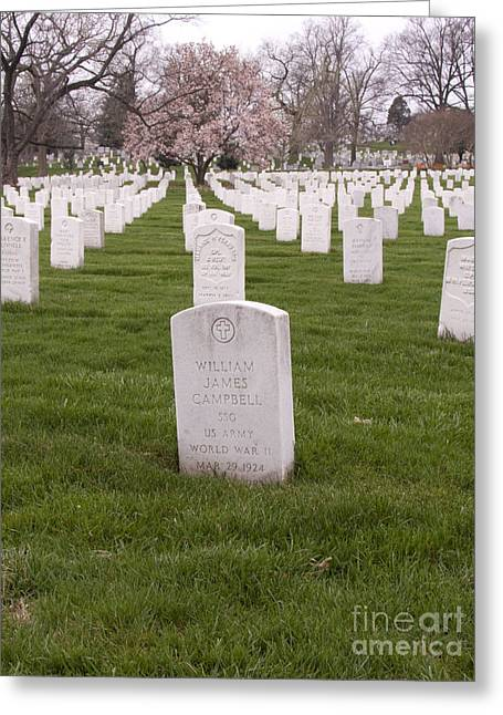 Grave Markers In Arlington National Cemetery Greeting Card by Tim Grams