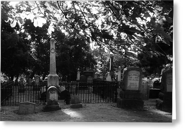 Graveyard 2 Greeting Card by Joyce Wasser