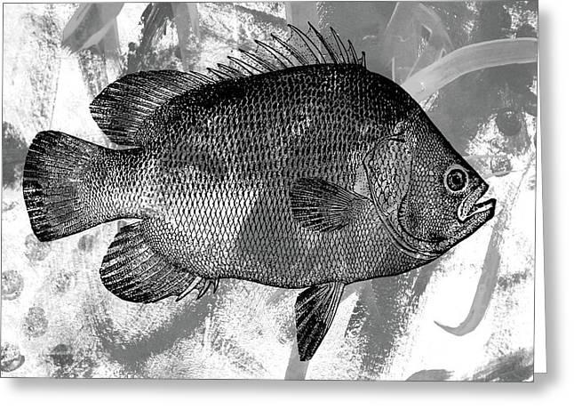 Gray Fish Greeting Card by Nancy Merkle