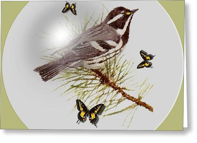 Gray Warbler Greeting Card by Madeline  Allen - SmudgeArt